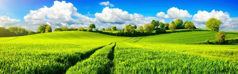 Eventbureau PB Action har holdning til økologi